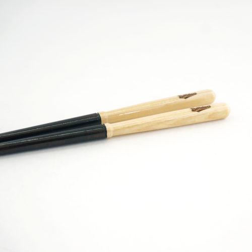 sp-hashilogo-20b